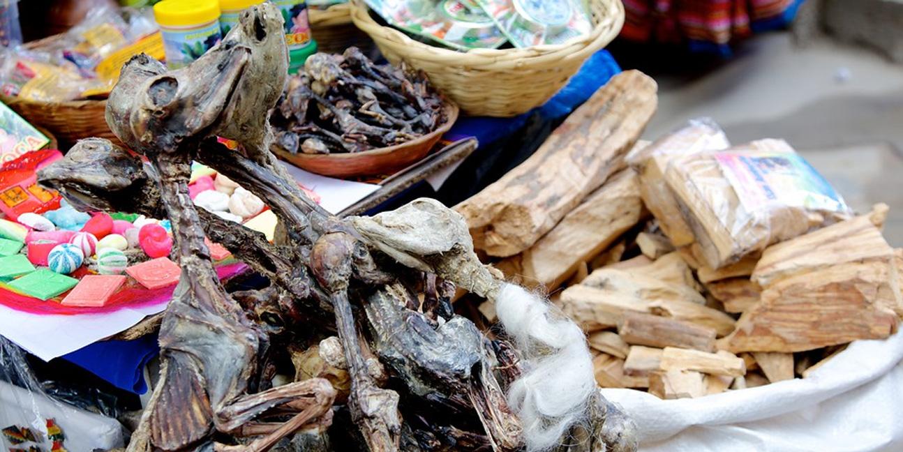 Mercado das Bruxas: Feto de Lhama