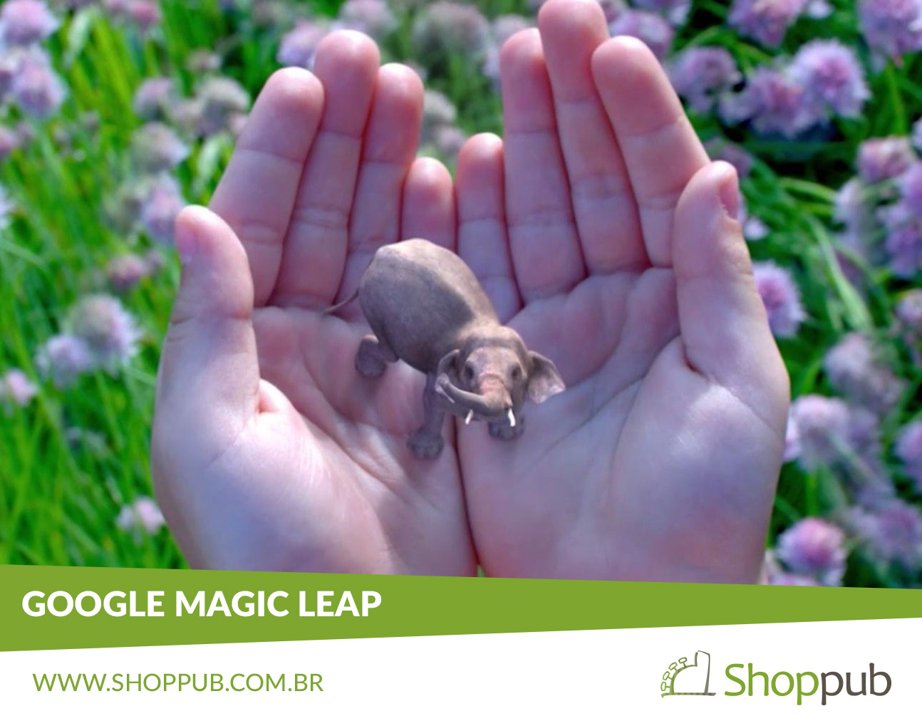 Google Magic Leap